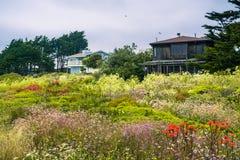 Houses in Moss Beach. San Francisco bay area, California stock image