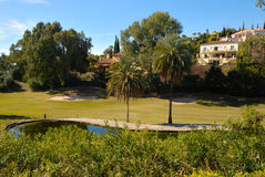 Houses next to golf lake Royalty Free Stock Photo