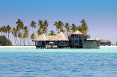 Houses over the transparent quiet sea water  and a palm tree. Maldives Royalty Free Stock Photo