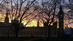 Houses of Parliament at Sunset London UK. Houses of Parliament and Big Ben photograph taken at sunset from the South side of the river, framed with trees royalty free stock image