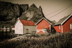Houses in Reine village, Norway Royalty Free Stock Image