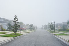 Houses, road  in florida with fog and a tree. Royalty Free Stock Photos