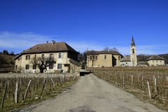 Houses in the rural area near Grenoble. Vineland Royalty Free Stock Images