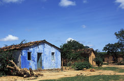 Houses in rural Brazil. Royalty Free Stock Image