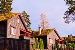 houses scandinavianen Royaltyfri Foto