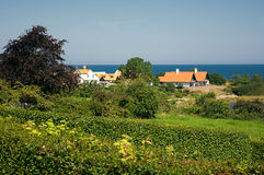 Houses by the sea. Houses by the sea on the island of Bornholm Royalty Free Stock Images