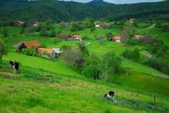 Houses spread on beautiful hills Stock Photos