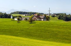 Houses surrounded by meadows. And trees in Austria on a sunny day Royalty Free Stock Photo