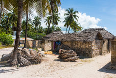Houses with thatch roofs and bundles of firewood on african beach. With palms, Zanzibar Stock Images