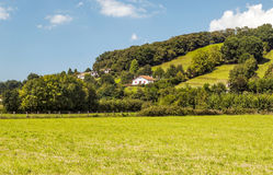 Houses with trees. Trees in the forests of Biarritz in France on a sunny day. You can see some rural houses Royalty Free Stock Photo
