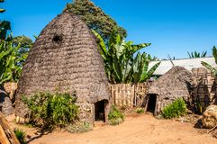 Houses of tribe Dorze. In Ethiopia stock images
