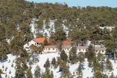 Houses in a winter mountain forest stock images
