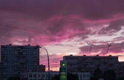 Moscow pink-clouds royalty free stock photo