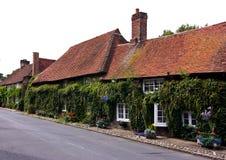 Houses on village street Stock Image
