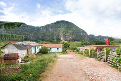 Houses in Vinales, Cuba Stock Images
