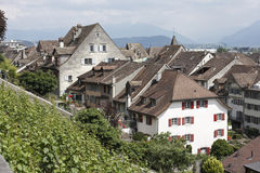Houses and Vines, Rapperswil Stock Photography