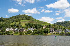 Houses and vineyards along German river Moselle Royalty Free Stock Image
