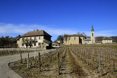 Houses and wineland in the rural area near Grenoble. Rural France Stock Photo
