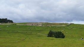 Housesteads Roman Fort i Northumberland, nordliga England fotografering för bildbyråer