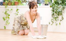 Housewife Stock Photos