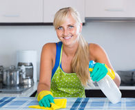 Housewife in apron with rag and cleanser cleaning up Royalty Free Stock Image