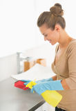 Housewife cleaning in bathroom Stock Photos