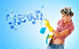 Housewife cleaning with detergent Stock Photography