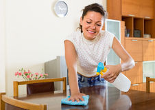 Housewife cleaning furniture with sprayer Royalty Free Stock Images