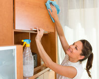 Housewife cleaning furniture with sprayer Stock Photos