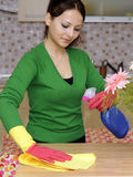 Housewife cleaning the house Royalty Free Stock Photography