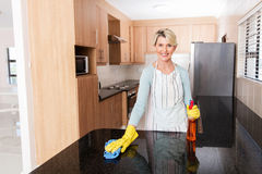 Housewife cleaning the kitchen Royalty Free Stock Image
