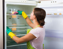 Housewife cleaning refrigerator Stock Photography