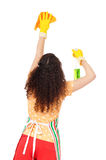 Housewife with cleaning spray Stock Images