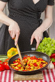 Housewife cooking mexican style dish Royalty Free Stock Image