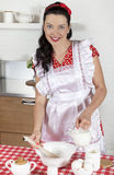 Housewife cooking Stock Photography