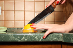Housewife cut lemon in the kitchen Stock Image