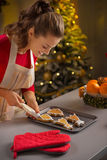 Housewife decorating christmas cookies Stock Image