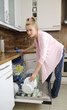Housewife at the dishwasher Royalty Free Stock Image