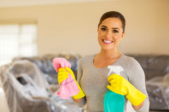 Housewife doing housework Royalty Free Stock Photo
