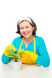 Housewife with flower Stock Photo