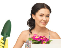 Housewife with flower in box and gardening trowel Royalty Free Stock Photos