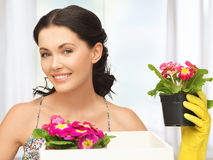 Housewife with flower in box and pot Royalty Free Stock Photos