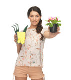 Housewife with flower in pot and gardening set Royalty Free Stock Photos