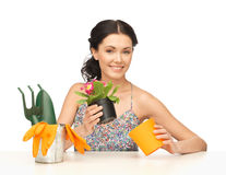 Housewife with flower in pot and gardening set Stock Image