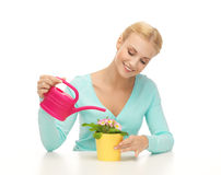 Housewife with flower in pot and watering can Royalty Free Stock Images