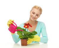 Housewife with flower in pot and watering can Stock Photo