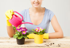 Housewife with flower in pot and watering can Stock Images
