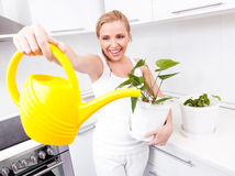 Housewife with flowers Royalty Free Stock Image