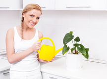 Housewife with flowers Royalty Free Stock Photo