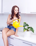 Housewife with flowers Stock Image